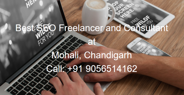 Best SEO Freelancer in Chandigarh & Mohali {Local SEO Expert}